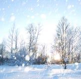 De scène van de winter stock afbeelding