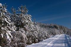 De scène van de winter Stock Foto