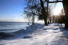 De scène van de winter Royalty-vrije Stock Foto's