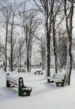 De Scène van de winter stock foto's