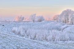 De scène van de winter in Nederland Royalty-vrije Stock Afbeeldingen
