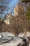 De Scène van de winter in NYC Stock Foto