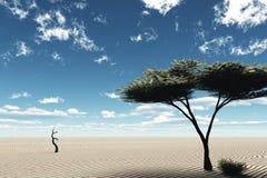 De scène van de woestijn Stock Afbeeldingen