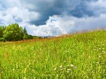 De scène van de zomer Stock Foto