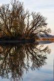 De scène van de zonsondergangrivier - portretrichtlijn Royalty-vrije Stock Foto's