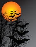 De scène van Halloween Stock Fotografie