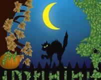 De scène van Halloween met kat Stock Afbeeldingen