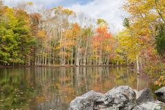De scène van de herfst de kleurrijke achtergrond Stock Afbeeldingen