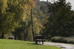 De scène van het de herfstpark Royalty-vrije Stock Afbeeldingen