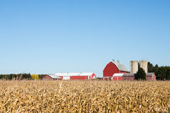 De Scène van het familielandbouwbedrijf in de herfst Stock Foto
