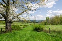 De Scène van het land, Hudson Valley, NY Stock Afbeelding