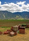 De Scène van het landbouwbedrijf - 1 Stock Foto's