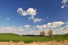 De scène van het Platteland van de lente in Colfax Royalty-vrije Stock Afbeeldingen