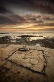 De scène van het strand met aardige stemming Royalty-vrije Stock Afbeelding