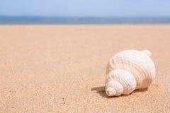 De scène van het strand met exemplaarruimte Royalty-vrije Stock Afbeeldingen