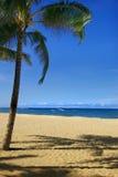 De Scène van het strand met Zand stock afbeeldingen