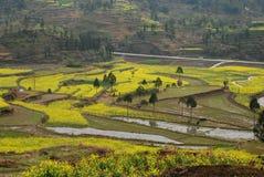 De scène van het terras in China stock fotografie
