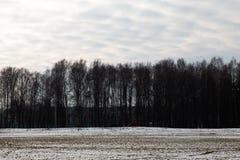 De scène van het de winterlandschap met in de Lente, Maart stock foto