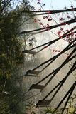 De scène van waterrad in Chinees royalty-vrije stock afbeelding