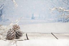 De scène van de winterkerstmis Stock Afbeeldingen