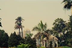 De scènelandschap van Egypte Stock Afbeelding