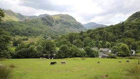 De scèneschapen van het land in van het de Valleimeer van gebiedsseatoller Borrowdale het District Cumbria Engeland het UK stock video