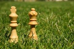 De schaakstukken van de koning en van de koningin Royalty-vrije Stock Afbeelding