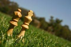 De schaakstukken van de koning en van de koningin Stock Afbeeldingen