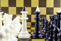 De schaakstukken zich bevinden tegenover elkaar, koningen in een centrum royalty-vrije stock foto
