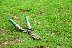 De schaar sneed het gras stock afbeelding