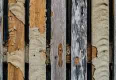 De schade houten omheining van het termietnest royalty-vrije stock afbeeldingen