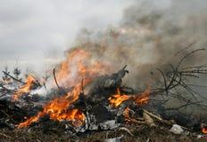 De schade van het milieu Royalty-vrije Stock Fotografie