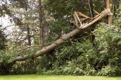 De Schade van het onweer Stock Foto's