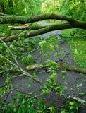 De Schade van het onweer Stock Afbeeldingen
