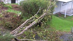 De schade van het onweer stock footage