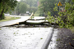 De Schade van het windonweer Royalty-vrije Stock Fotografie