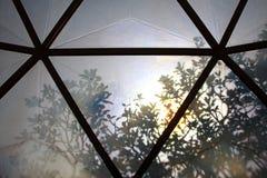 De schaduw van de boom op dak van botanische koepel Royalty-vrije Stock Afbeelding