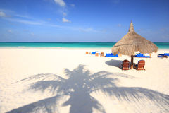 De schaduw van de palm op strand royalty-vrije stock afbeeldingen