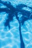 De schaduw van de palm in pool Stock Foto