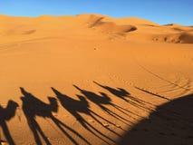 De schaduw van een kameelcaravan in de Woestijn, kijkt als Dali stock foto