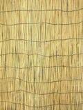 De Schaduw van het bamboe (Achtergrond) Stock Afbeelding