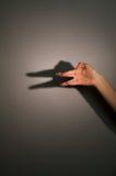 De schaduw van het silhouet van dier Stock Foto's