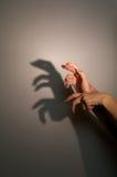 De schaduw van het silhouet van hagedis stock foto