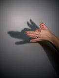 De schaduw van het silhouet van wolf royalty-vrije stock fotografie