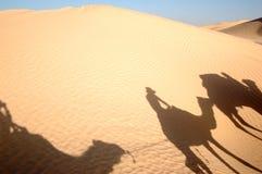 De schaduw van kamelen Stock Afbeeldingen