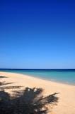 De schaduw van palmen op strand Stock Foto's
