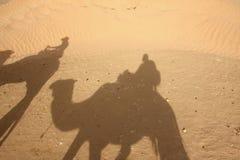 De schaduwen van de kameel in woestijn Royalty-vrije Stock Foto's