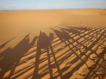 De schaduwen van de kameelcaravan in de woestijn van de Sahara Stock Afbeelding