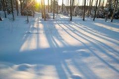 De schaduwen van de sneeuw Stock Afbeeldingen