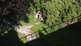 De schaduwen van enloved paar op groen struiken en gras Het houden van de paargangen, delen dan een kus op een brug stock videobeelden